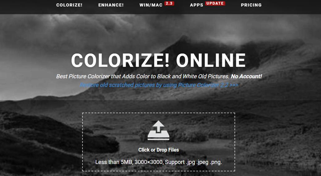 imagecolorizer.com